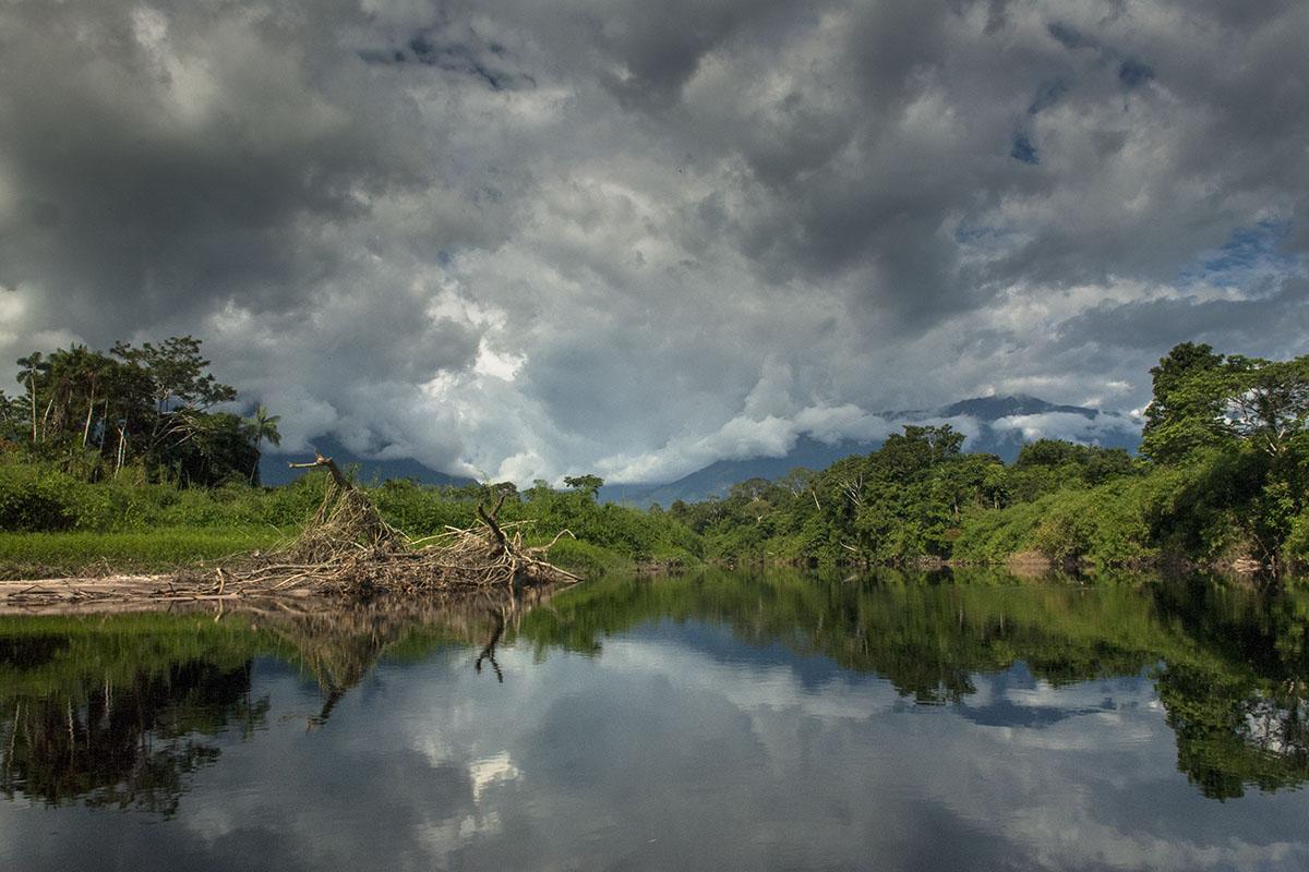 <p><strong>Rio Baria</strong> Venezuela</p>