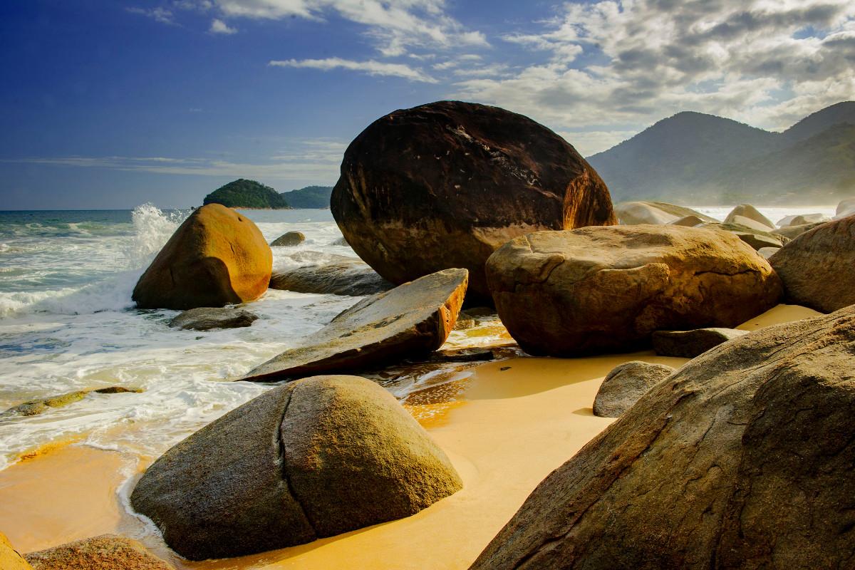 <p><strong>Mata atlantica</strong> Braz&iacute;lie</p>